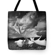 Moose Skull On Parched Earth Tote Bag