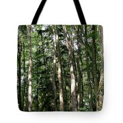 More Platte Tote Bag