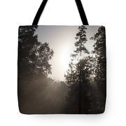 Morning At Valley Forge Tote Bag
