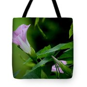 Morning Awakening Tote Bag