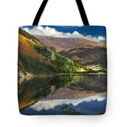 morning by Llyn Gwynant Tote Bag