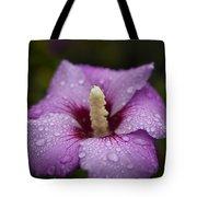 Morning Dew On Garden Flower Tote Bag