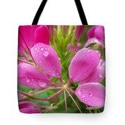 Morning Dew On Pink Cleome Tote Bag