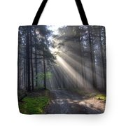 Morning Forest In Fog Tote Bag