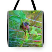 Morning Glory Beginning Tote Bag