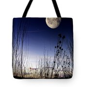 Morning Moonscape Tote Bag