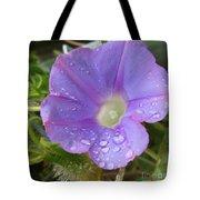 Morning Rain Drops Tote Bag