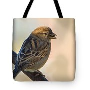 Morning Snack Tote Bag