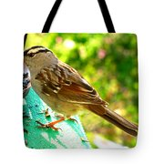 Morning Sparrow II Tote Bag