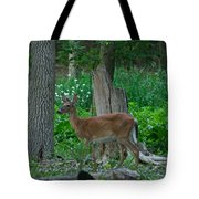 Morning Stroll 7353 1743 Tote Bag