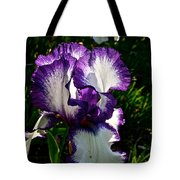 Morning Sun Tote Bag