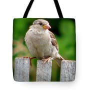Morning Visitor Tote Bag