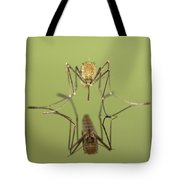 Mosquito Culicidae Freshly Hatched Tote Bag