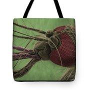 Mosquitos Head, Sem Tote Bag