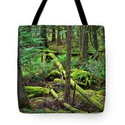 Moss And Fallen Trees In The Rainforest Of The Pacific Northwest Tote Bag