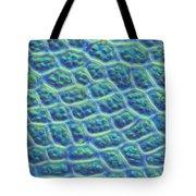 Moss Cells Tote Bag