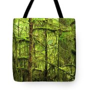 Moss-covered Trees Tote Bag