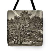 Moss-draped Live Oaks Sepia Toned Tote Bag