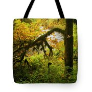 Moss In The Forest Tote Bag