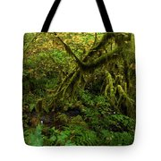 Moss In The Rainforest Tote Bag