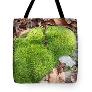 Moss On A Rock Tote Bag