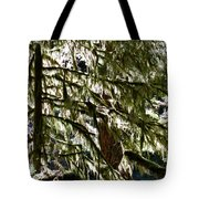 Moss On Trees Tote Bag