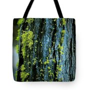 Mossy Compass Tote Bag