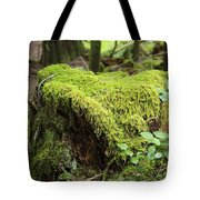 Mossy Old Stump Tote Bag