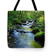 Mossy Rocks And Water   Tote Bag