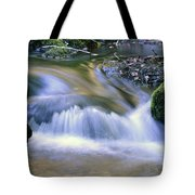 Mossy Rocks Tote Bag