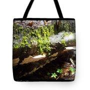 Mossy Waterfall On Mushroom Rock Tote Bag