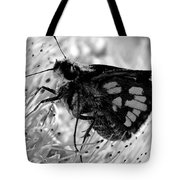 Moth One Tote Bag