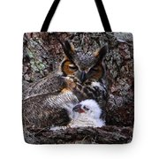 Mother And Baby Owl Tote Bag