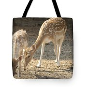 Mother And Child V2 Tote Bag