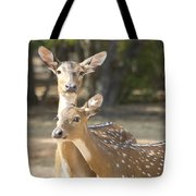 Mother And Child V3 Tote Bag