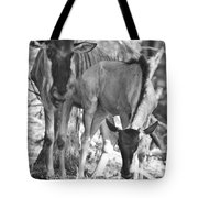 Mother And Child V4 Tote Bag