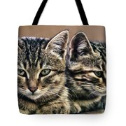 Mother And Child Wild Cats Tote Bag