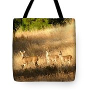 Mother And Twins Tote Bag