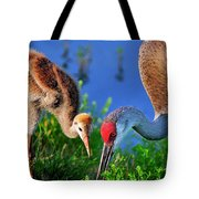 Mother And Young Sandhill Crane Tote Bag