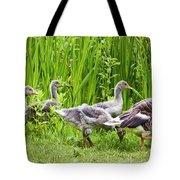 Mother Goose Leading Goslings Tote Bag