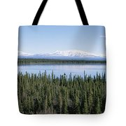 Mount Drum, Sanford And Wrangell Tote Bag