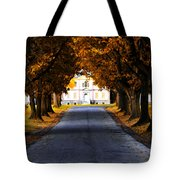 Mount Pleasant Mansion - Philadelphia Tote Bag