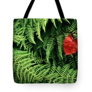 Mountain Bindweed And Fern Fronds Tote Bag