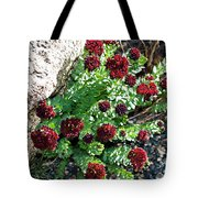 Mountain Blooms Tote Bag