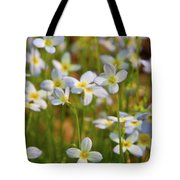 Mountain Flowers 5534 Tote Bag