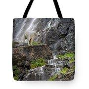 Mountain Goat Tote Bag