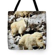 Mountain Goat Trio Tote Bag