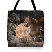 Mountain Lion On The Prowl Tote Bag