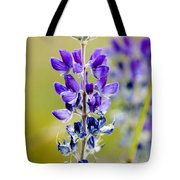 Mountain Lupine Glacier National Park Tote Bag