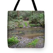 Mountain Road And Footbridge Tote Bag
